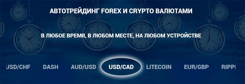 Forex xanım 780 270 ədəd 2