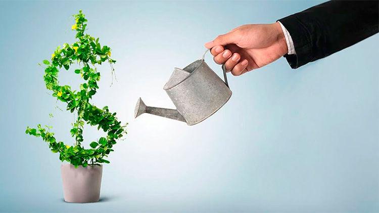4 internet investicii pod procenty dg7c